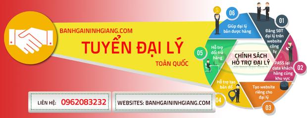 banhgaininhgiang.com tuyển đại lý toàn quốc